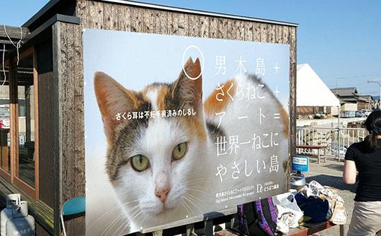 160628_ogijimaArt.jpg