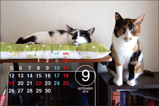 160901_calendar9.jpg