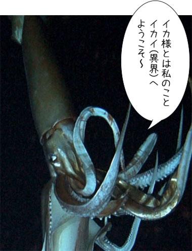 161102_daioika-.jpg