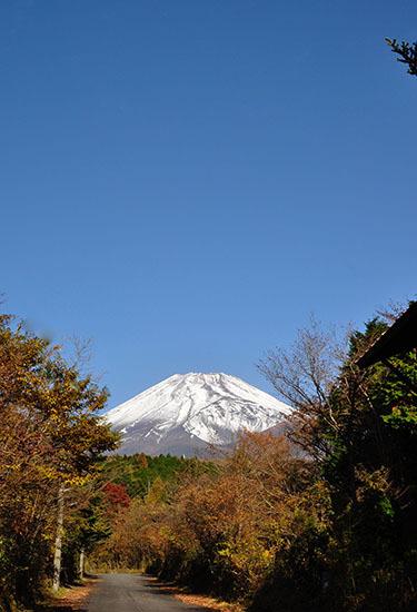 161113_fujisan.jpg