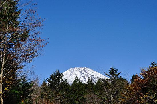 161113_fujisanroku.jpg