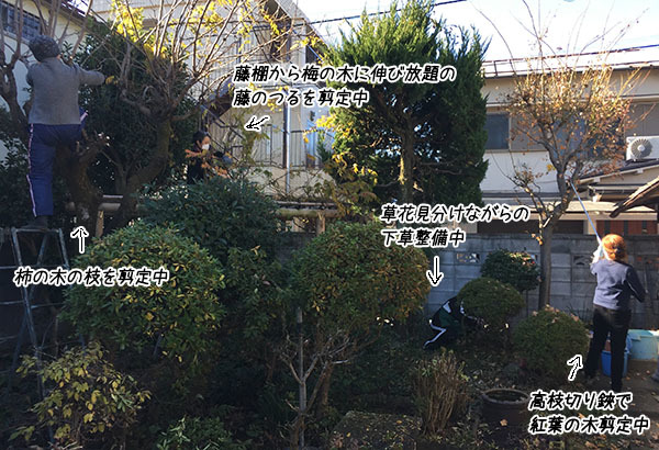 161212_1211yabanegarden.jpg