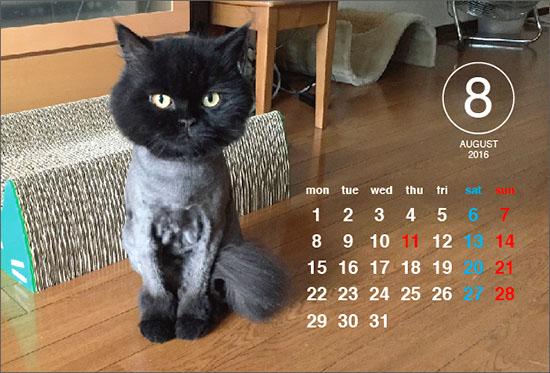 2016_calendar8.jpg