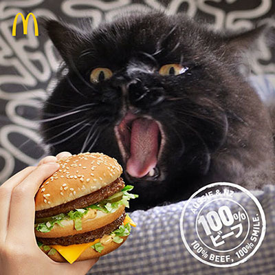 burger-snapKIN.jpg
