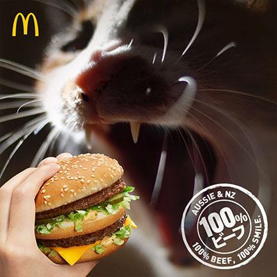 burger-snapViv1.jpg