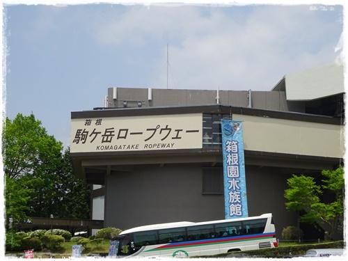DSC00912g.jpg