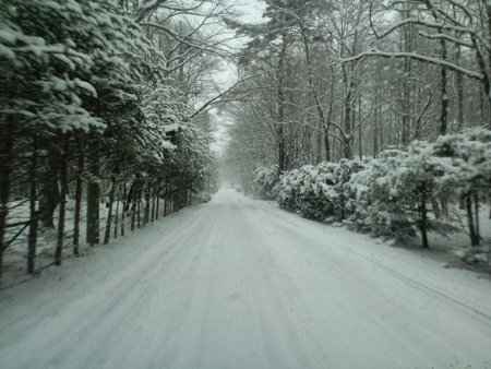 H28.11.24降雪道路
