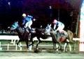 161007Jの栄冠・酒井忍騎手2002年東京ダービー