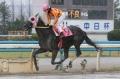 4R:瀧川騎手 2