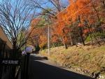 水道山は紅葉