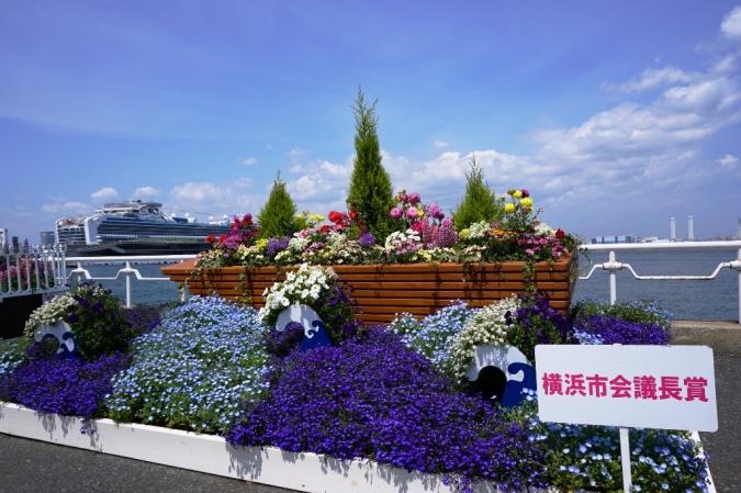 DSC01610横浜