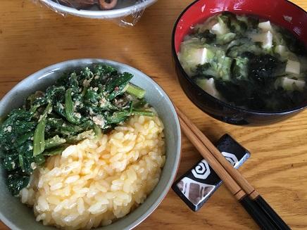 5242016昼食S