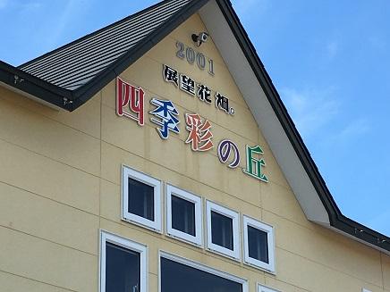 7252016 富良野 四季彩の丘S6