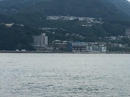 7312016 沢港ー須崎S3