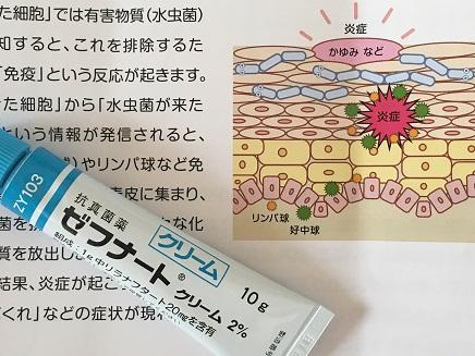 8022016 皮膚科S2