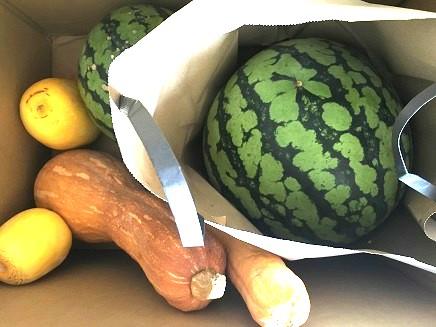 8132016 野菜S2