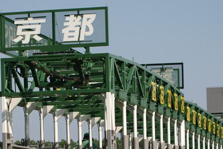 【スワンステークス 枠順決定】6枠11番サトノアラジン、4枠8番フィエロ
