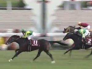 【スワンステークス 結果動画】サトノアラジン差し切り重賞2勝目