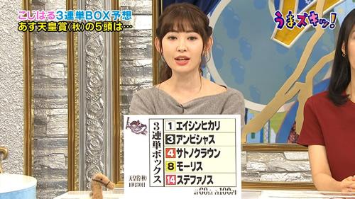 2016年 天皇賞(秋) こじはる予想
