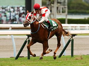 【京王杯2歳ステークス】1人気して飛んだ名馬の多い早熟重賞
