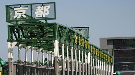 【ファンタジーステークス 枠順決定】1枠1番ミスエルテ、7枠10番ディアドラ