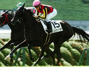 【デイリー杯2歳ステークス】今年の狙いは牝馬か