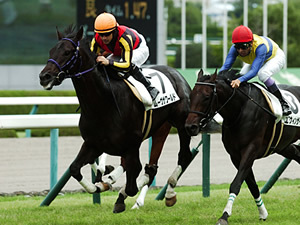 【東京スポーツ杯2歳ステークス】豪華メンバーの出世レース