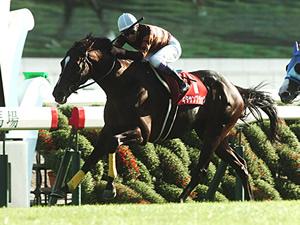 【ジャパンカップ】上位人気にはどの馬にも不安要素あり?