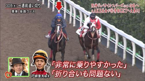 2016年 阪神ジュベナイルフィリーズ うまんちゅ4