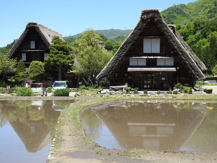 田んぼの水面に新緑と合掌造りが映る絶景のロケーション 白川郷 ②