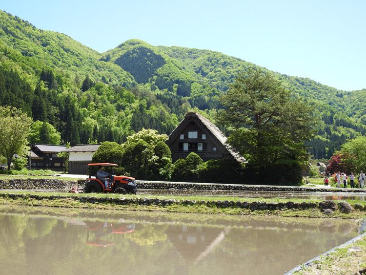 田んぼの水面に新緑と合掌造りが映る絶景のロケーション 白川郷 ⑥