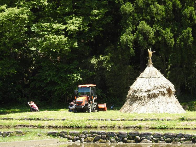 田んぼに水が張られる新緑の時期限定の風景を楽しもう! 白川郷 ④