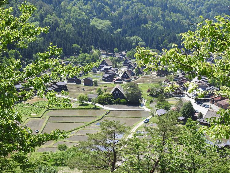 田んぼに水が張られる新緑の時期限定の風景を楽しもう! 白川郷 ⑥