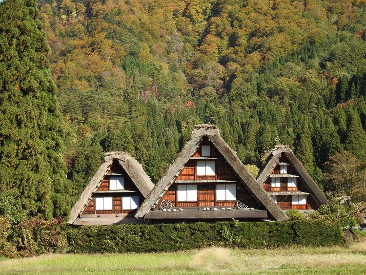白川郷 秋の紅葉。 冬の静寂。 四季折々の彩りと故郷の懐かしい風景にとても癒やされます②