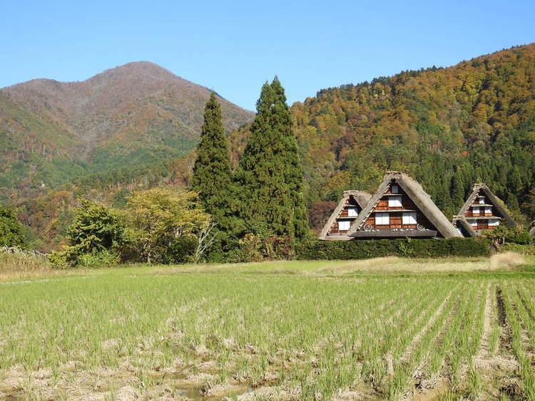 白川郷 秋の紅葉。 冬の静寂。 四季折々の彩りと故郷の懐かしい風景にとても癒やされます③