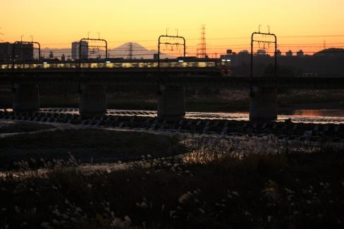 多摩川と8000系