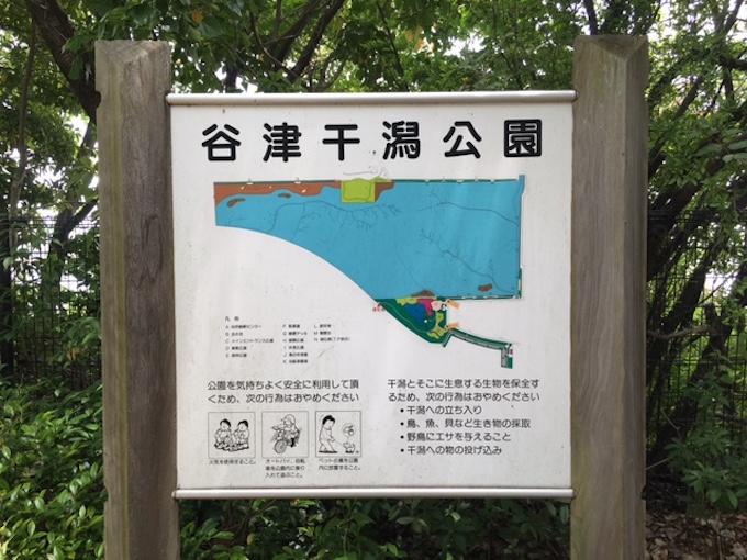 谷津干潟1
