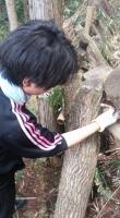 タケノコ掘り4