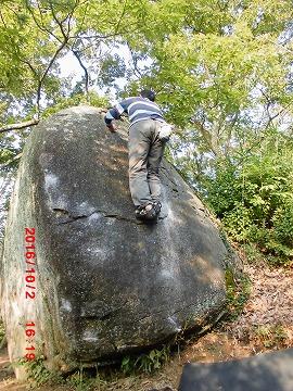 ティータイム岩メンマF岡