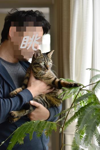 ☆DSC_0351 (1EE) (1)thum[1]
