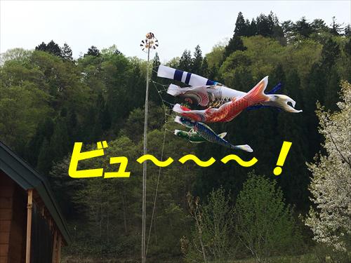 1.冨士神社例祭2016村廻り (22)_R