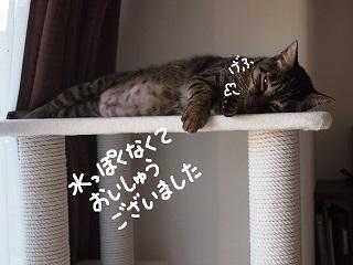 3nen7-2.jpg