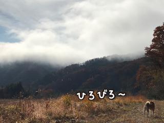 161120_1.jpg