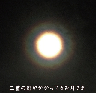 161216_1.jpg