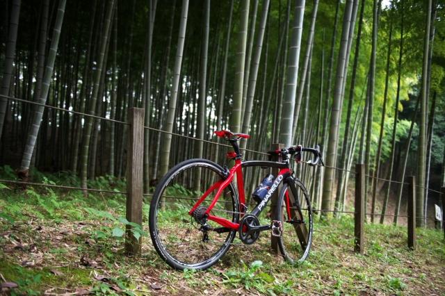 竹林とPinarello Prince-01