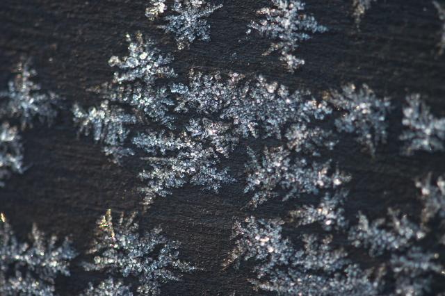 霜の結晶-02