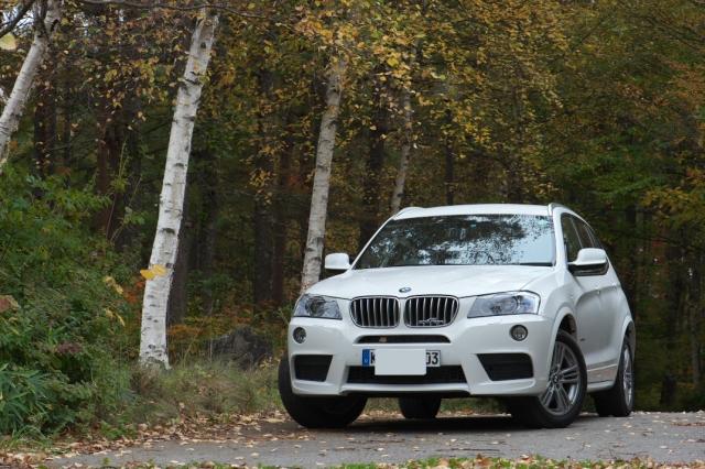 BMW/X3と黄葉-02