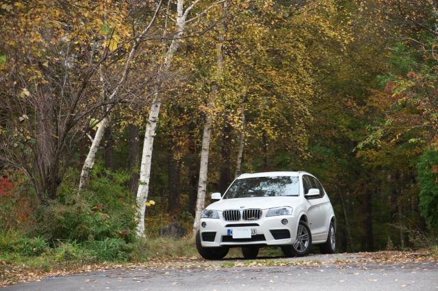 BMW/X3と黄葉-01