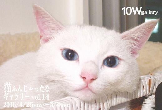 猫ふん14
