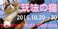 ganmi_banner200-100.jpg